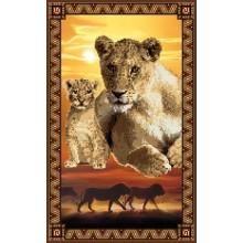 Львы (Серия африканские сюжеты)