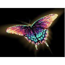 Бабочка - Papilionidae